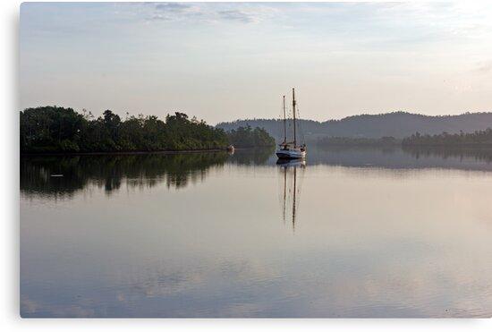 Dreamy Morn ~ Johnstone River, Innisfail, FNQ. AU by Kerryn Madsen-Pietsch