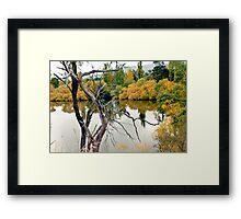 Derwent River 2013 Framed Print