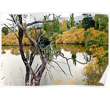 Derwent River 2013 Poster