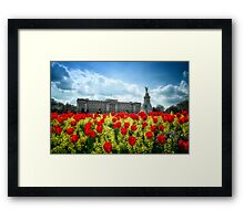 Buckingham Palace and tulips Framed Print
