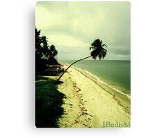 Paradise Island, Pernambuco, Brazil Canvas Print