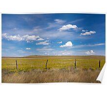 Rural scene. Poster
