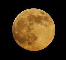 Super Moon 2013 by Karen  Rubeiz