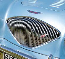Austin Healy 100 (grille) by John Morris