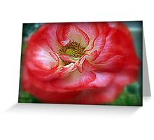 Popping Poppy Greeting Card
