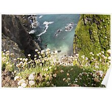 Clifftop View Poster