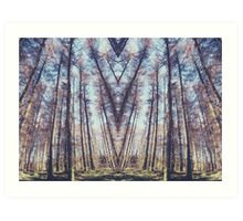 A thousand years in perfect symmetry Art Print
