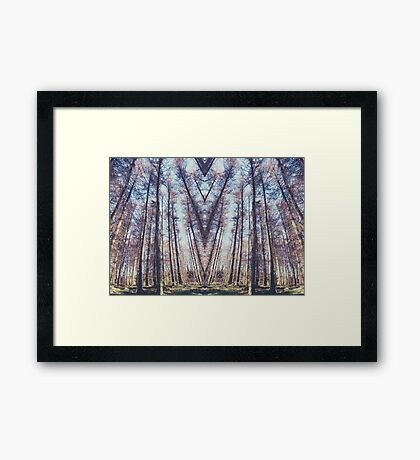A thousand years in perfect symmetry Framed Print