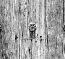 San Juan Doorway Detail Black and White by marybedy