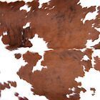 Brown Cowhide by Gunter Nezhoda