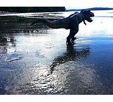 Rex on the Beach Photographic Print