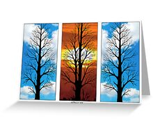 THREE TREES IN A ROW Greeting Card