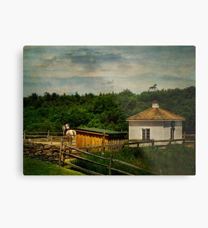 Young Rider and Horse Metal Print