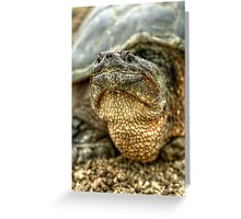 Snapping Turtle X Greeting Card