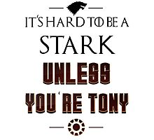 Hard to be a Stark Photographic Print