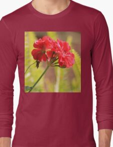 She never recognised her own beauty... Long Sleeve T-Shirt