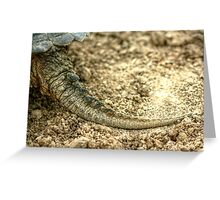Snapping Turtle XIII Greeting Card