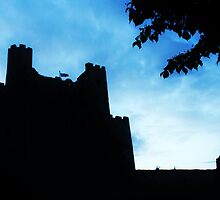 Rochester Castle At Night  by Sophie Lasson