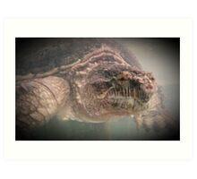 Wildlife: Snapping Turtle Art Print