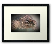 Wildlife: Snapping Turtle Framed Print