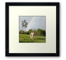 Palomino Paint Horse and Rainbow Artwork Framed Print