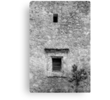 San Jose Wall Detail w Tree Black and White Canvas Print