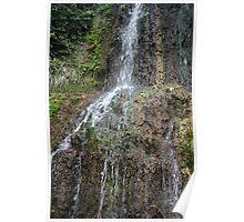 Waterfall Japanese Tea Garden Poster