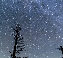 Star Trails at Bryce Canyon by bengraham