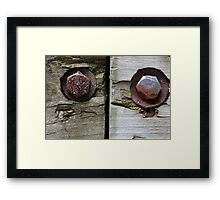 Bolts and Ant Framed Print