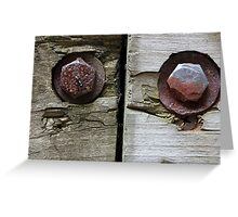 Bolts and Ant Greeting Card