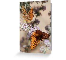 Butterflies 1 Greeting Card