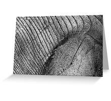 Wood Eye 2 Black and White Greeting Card