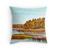 Maine Harbor Throw Pillow