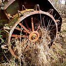 A Bad CASE Of Rust by WildestArt