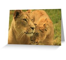 Nuzzles with my Mom Greeting Card