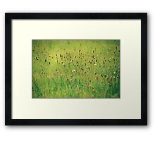 Upon the fields so green Framed Print