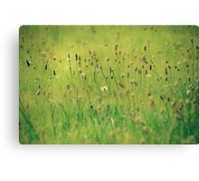 Upon the fields so green Canvas Print