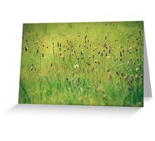 Upon the fields so green Greeting Card