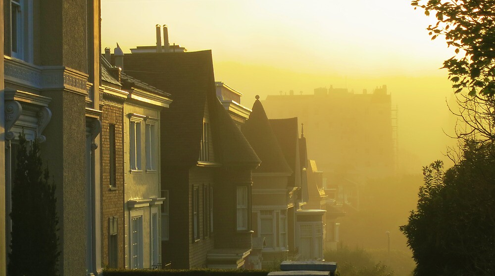 Pacific Misty Morning by David Denny