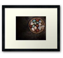 Spring Primative Nest Framed Print