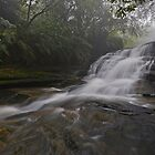 Misty Cascades. by Warren  Patten