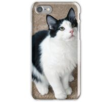 Fluffy Black and White Cat iPhone Case/Skin