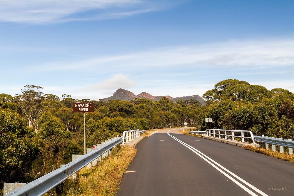 Lyell Highway, Nr. Derwent Bridge, Tasmania by Elaine Teague
