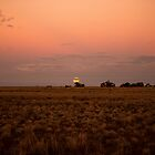 super moon rising  by outbacksnaps