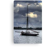 The Stormy Petrel  Canvas Print