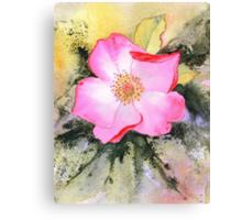 Rosemary's Rose (Original sold) Canvas Print