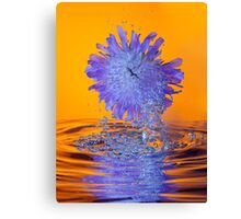 Scabious with Bubbles and Reflection Canvas Print