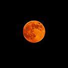 Super Duper Strawberry Moon. by Lee d'Entremont