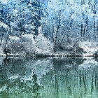 Winter Wonderland by JMP-Graphics