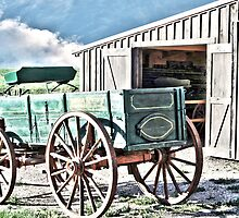 Midwest Buggy and Barn by designingjudy